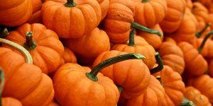 Smoked Pumpkin Seeds